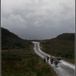 scotland-139