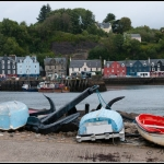 Tobermory, Isle of Mull - SCL146