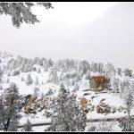 LAND25 Winter Landscapes